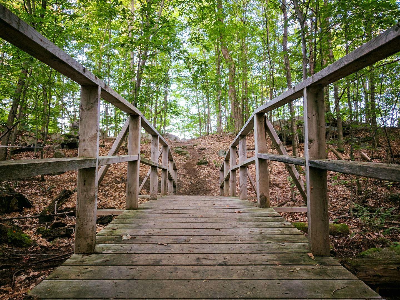 A wooden bridge in the forest near the Dhamma Suttama meditation center in Montebello, Québec.